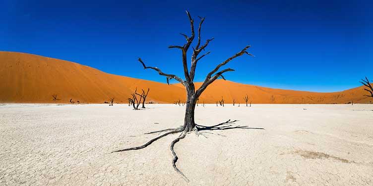Dead Vleï en Namibie