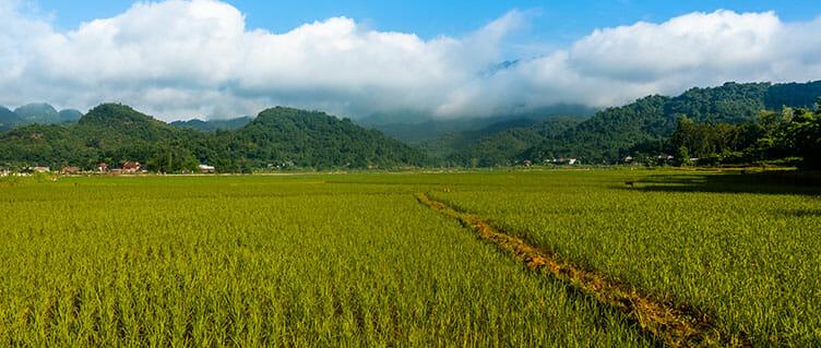 Hoa Binh au Vietnam