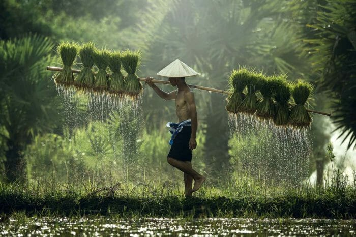 Voyage Vietnam et Cambodge Horizons d'Asie