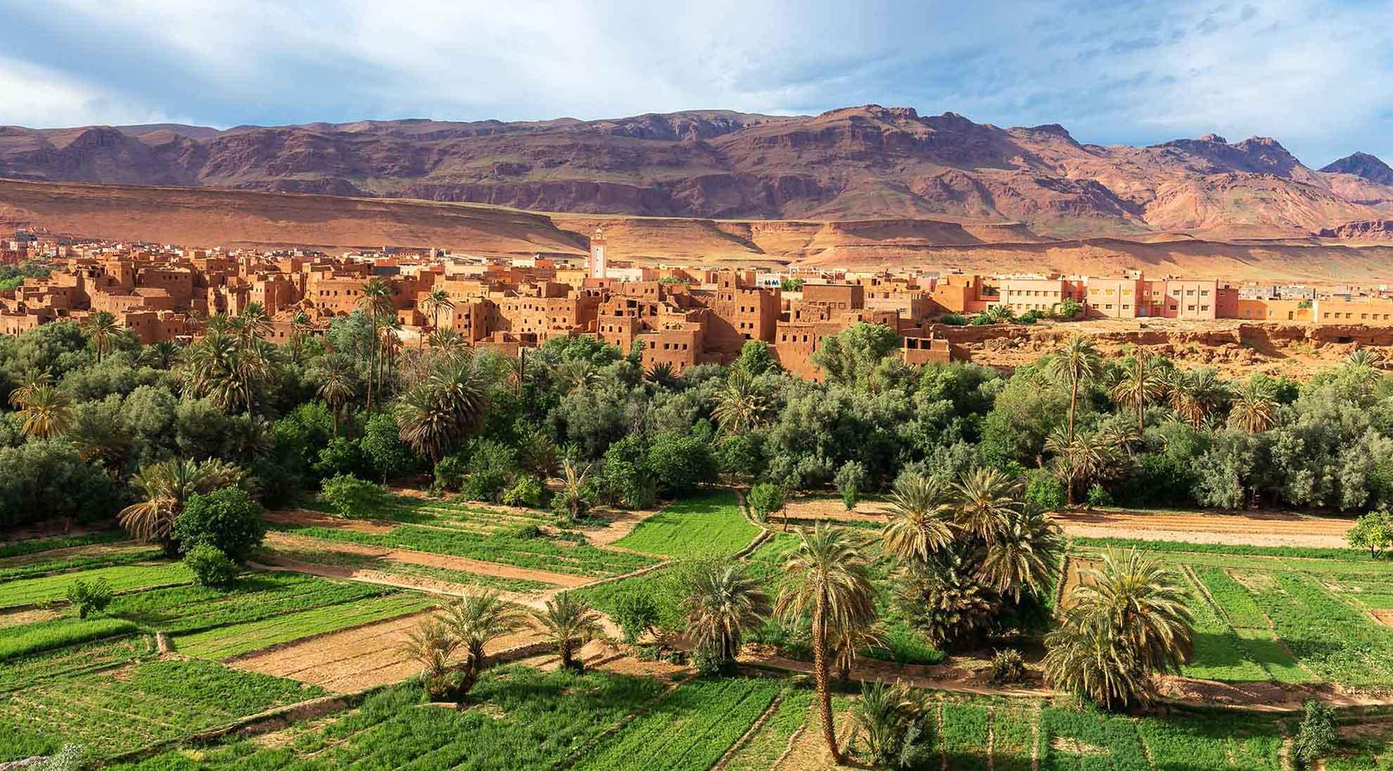 Oasis au Maroc Samsara