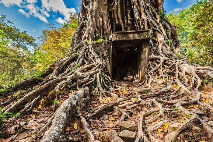 Voyage Vietnam et Cambodge : Horizons d'Asie