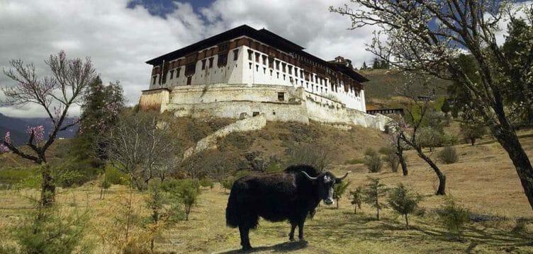 Paro Dzong Monastère avec Samsara