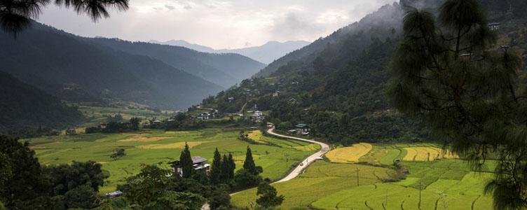 Vallée de la Tang au Bhoutan