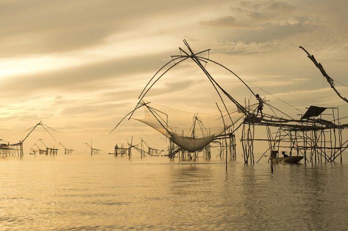 Voyage en Inde : Le Kerala