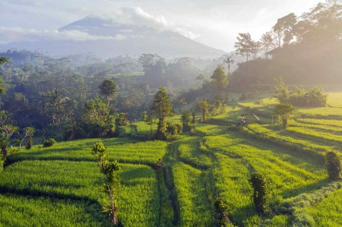 Voyage en Indonésie, de Java à Bali