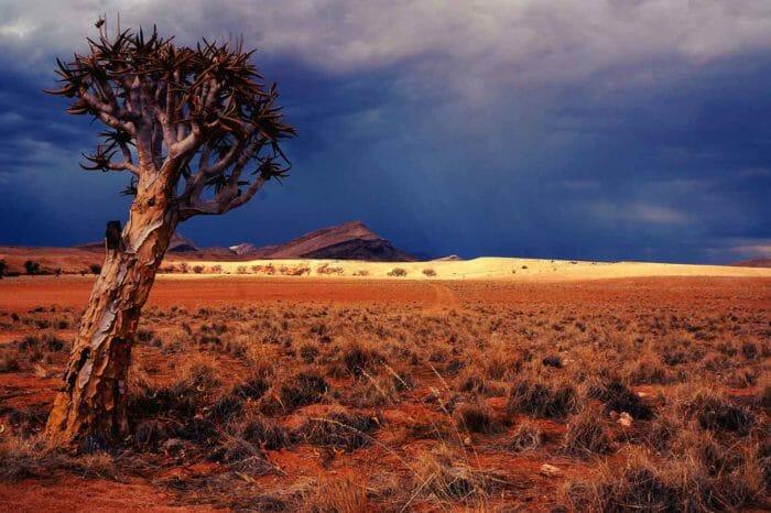 Voyage du Cap à la Namibie Confort