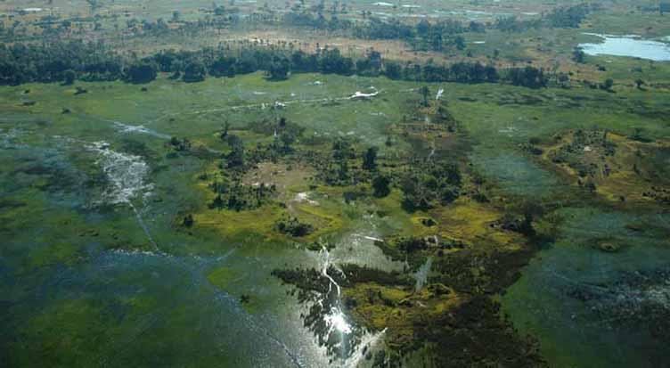 Vue aérienne sur l'Okavango au Botswana
