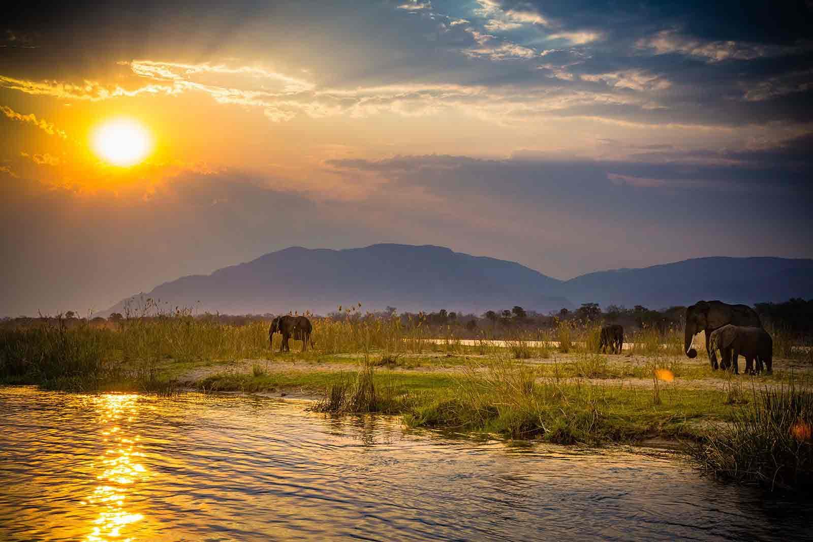 Safari sur le zambèze avec Samsara Voyages