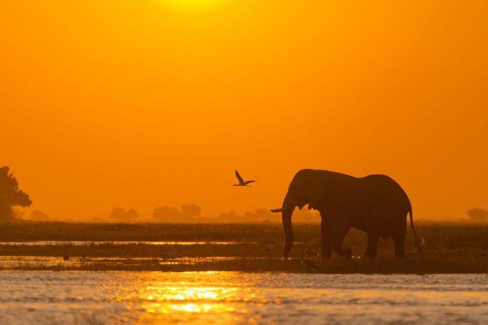 Voyage Namibie Botswana et Chutes Victoria Confort