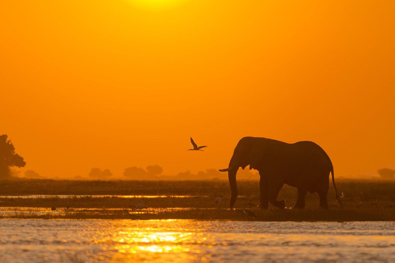 Voyage Namibie Botswana Chutes Victoria Confort