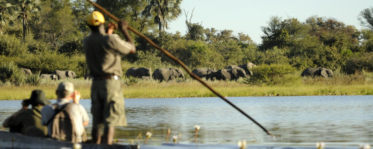En mokoro dans le delta de l'Okavango