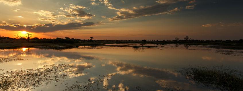 Coucher de soleil sur le delta de l'Okavango