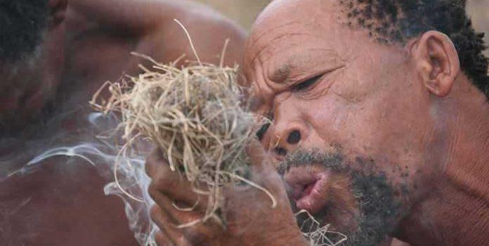 Bushmen au Botswana
