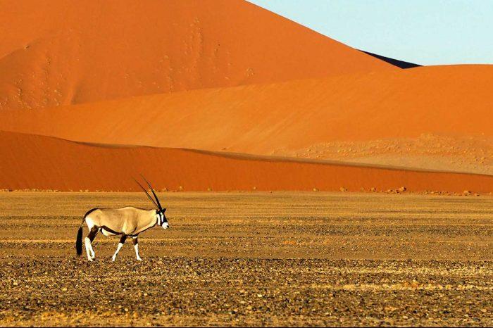 Voyage Namibie Essentielle