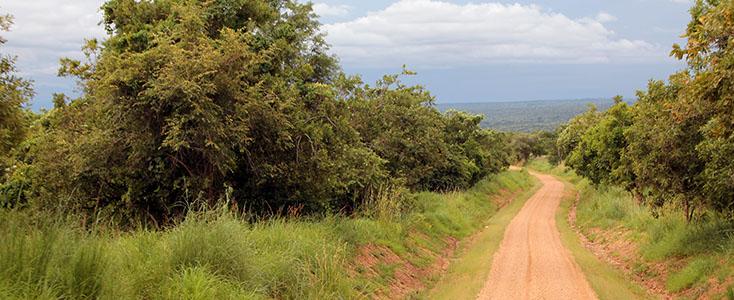 Le Parc National de Murchison en Ouganda, circuit Samsara Voyages