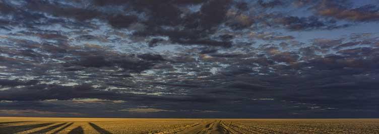 Voyage à Makgadikgadi au Botswana