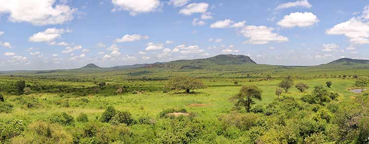 Parc de Tsavo ouest lors d'un safari au Kenya