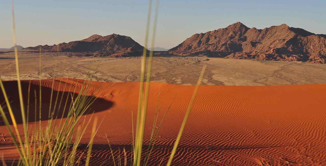 Voyage dans le désert de Namibie